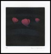 Three Butterflies (Red)