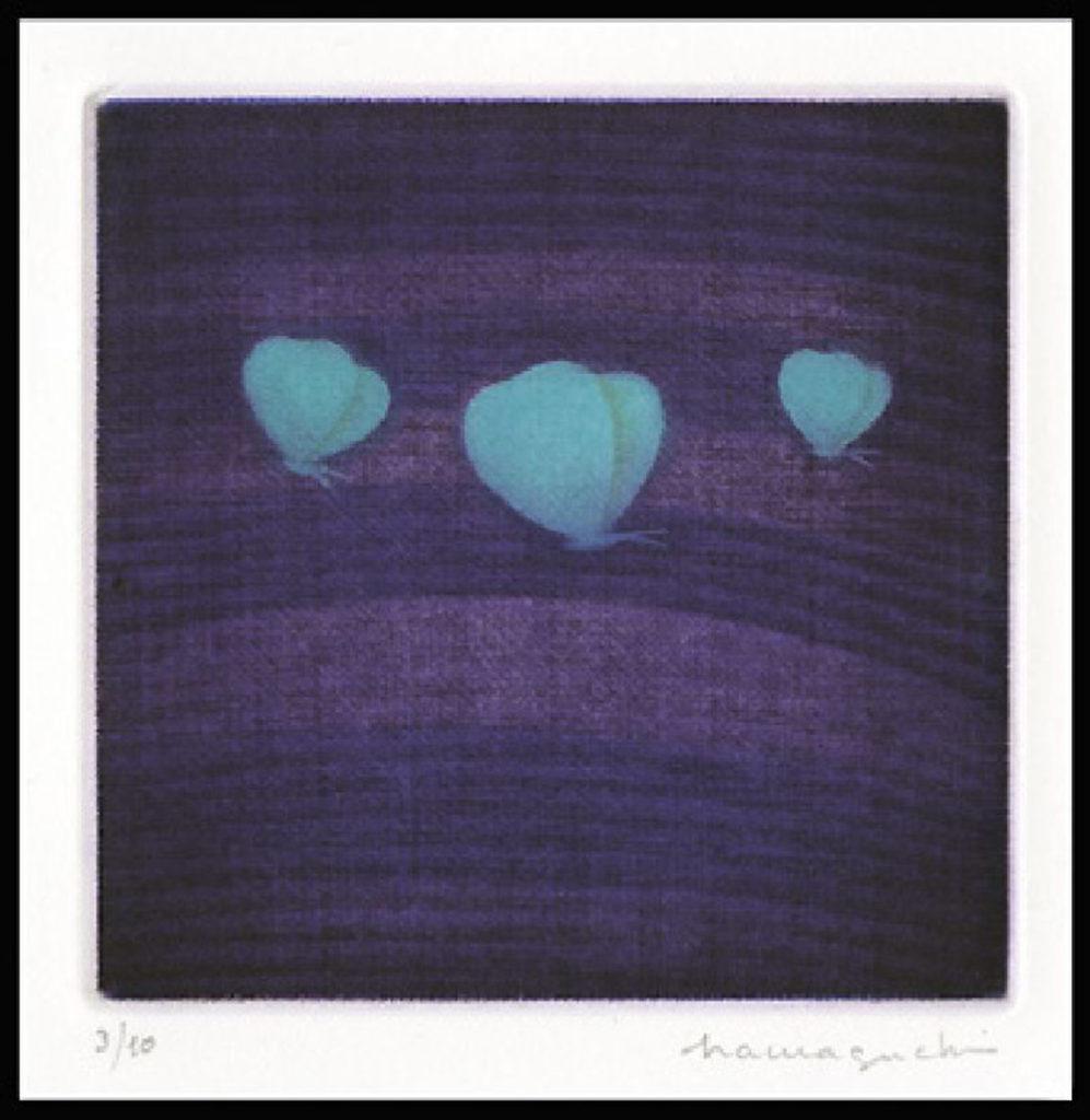 Three Butterflies (Blue)