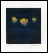 Three Butterflies (Yellow)