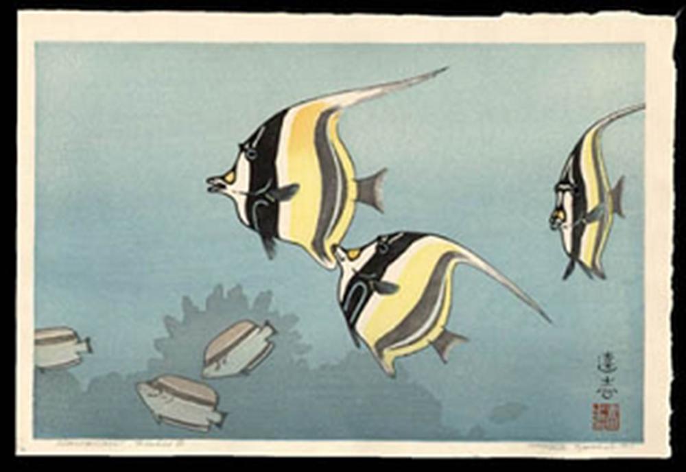 Hawaiian Fishes B