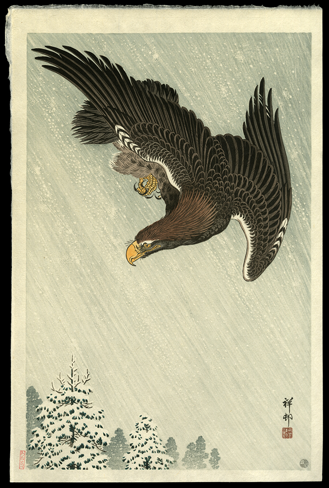 Eagle Flying in the Snow