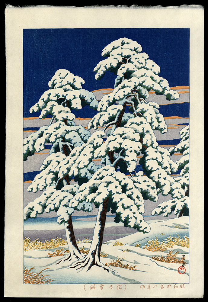 Pine Tree After Snow