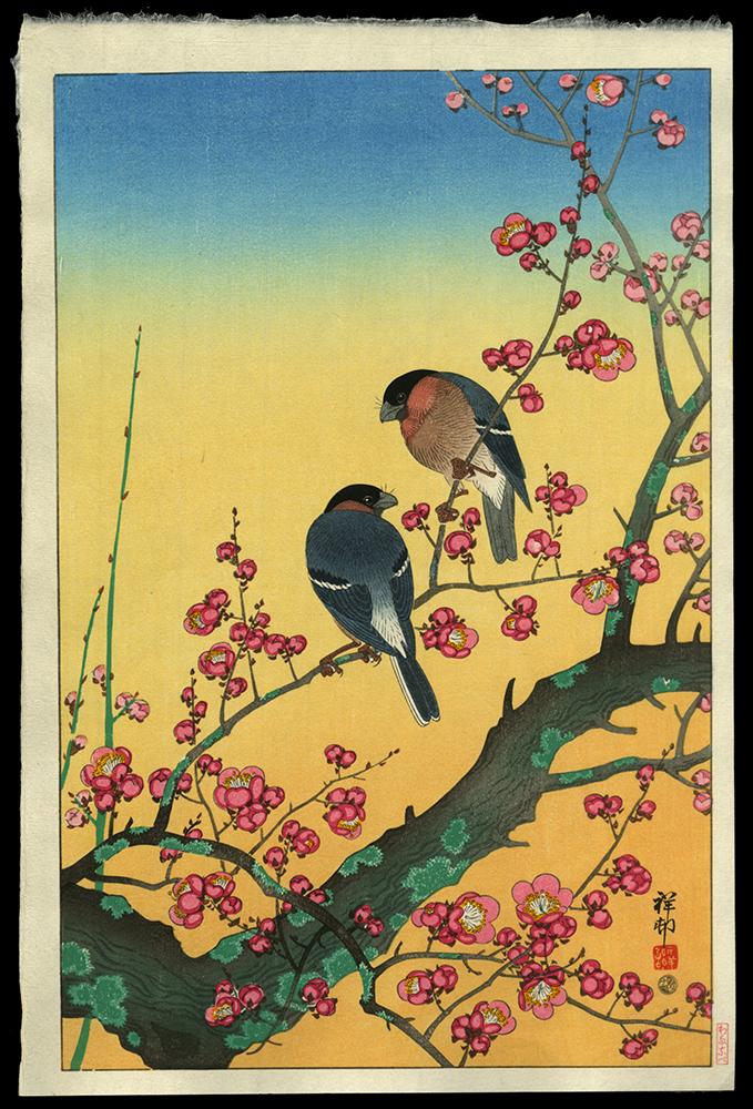 Plum Blossoms and Oriental Bullfinch
