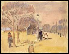 Stroll in Park