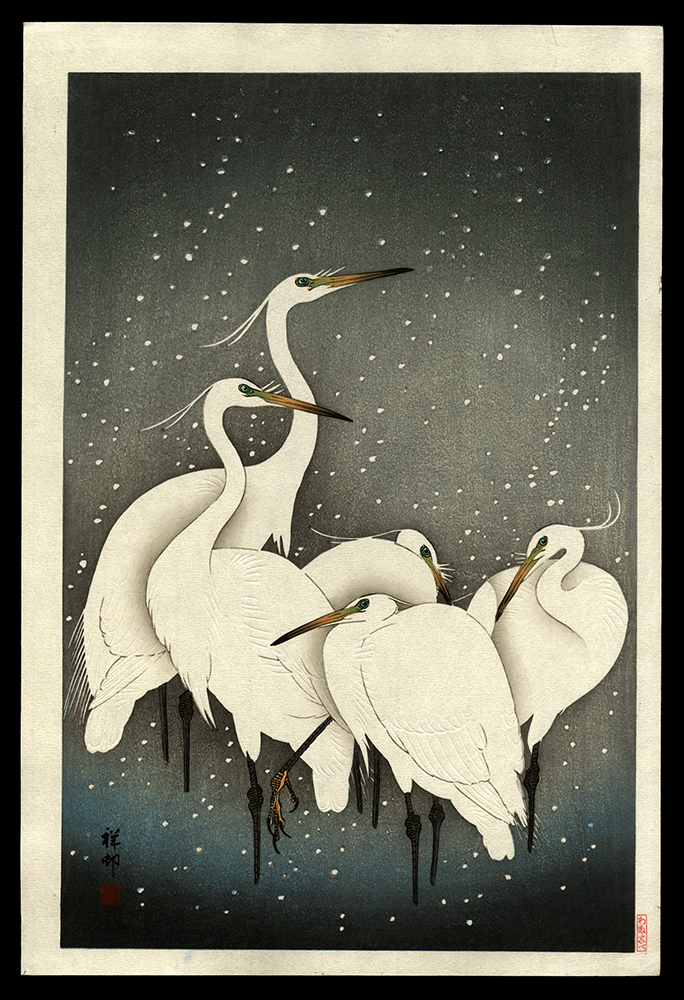 A Group of Herons in the Snow