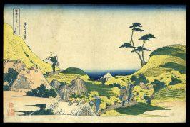 Lower Meguro