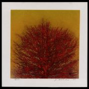 Treetop (red)