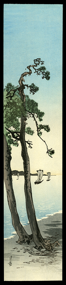 Pine Trees and Sailboats