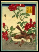 Two Birds with Red Flowers