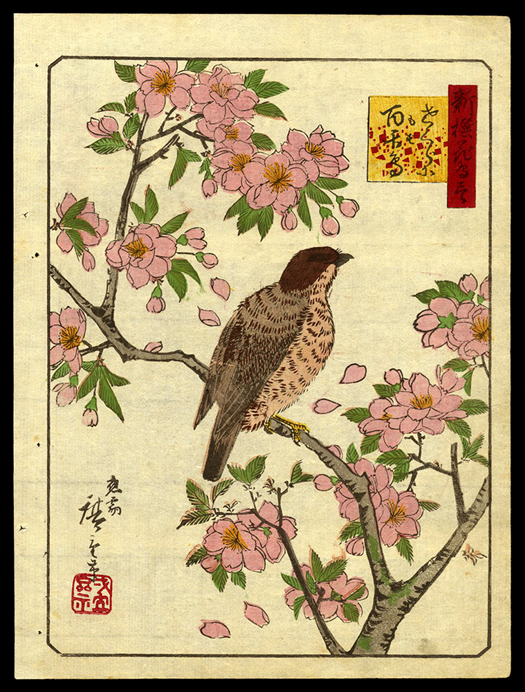Bird on a Blossoming Branch