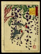 Two Birds and Wisteria