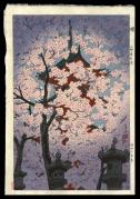 Blooming Cherry at Toshogu Shrine, Ueno