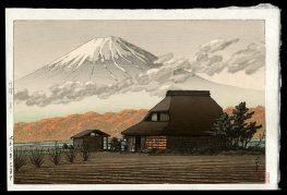 Mt. Fuji Seen from Narusawa in Autumn
