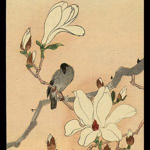 A Bird and Mokuren Koson