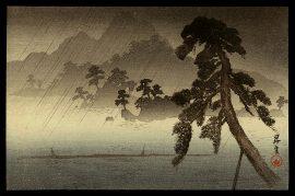The Island of Thousand Pine Trees in Rain