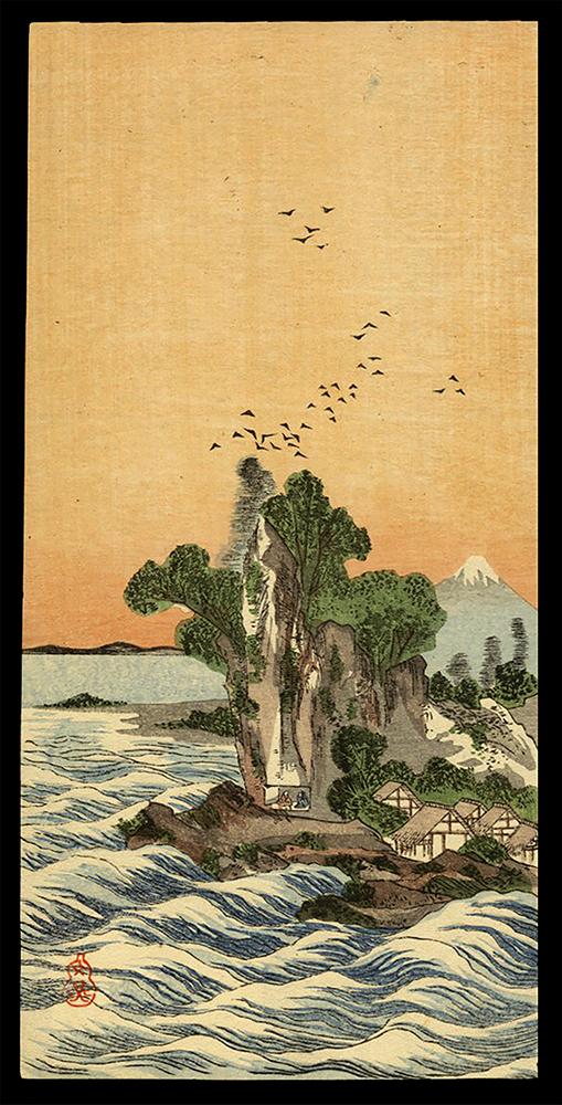 Birds Circling an Island