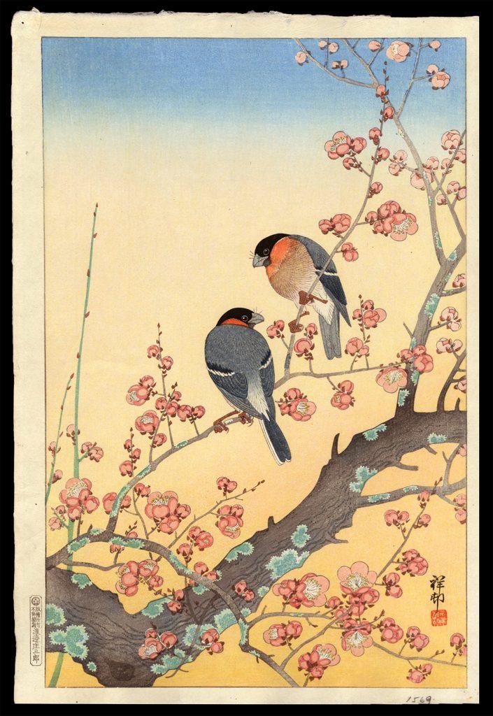 Plum Blossoms and Oriental Bullfinch