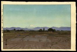 Fujiyama from Musashino