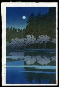 Spring Night at Inokashira