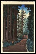 The Nikko Highway