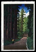 Road to Nikko