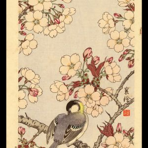 Bird on a Cherry Branch Jo