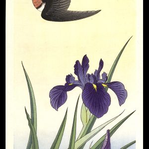 Black Bird and Iris Jo