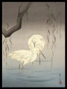 Two Egrets by a Willow