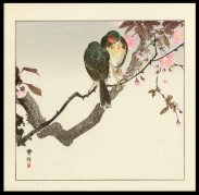Two Birds on a Cherry Branch