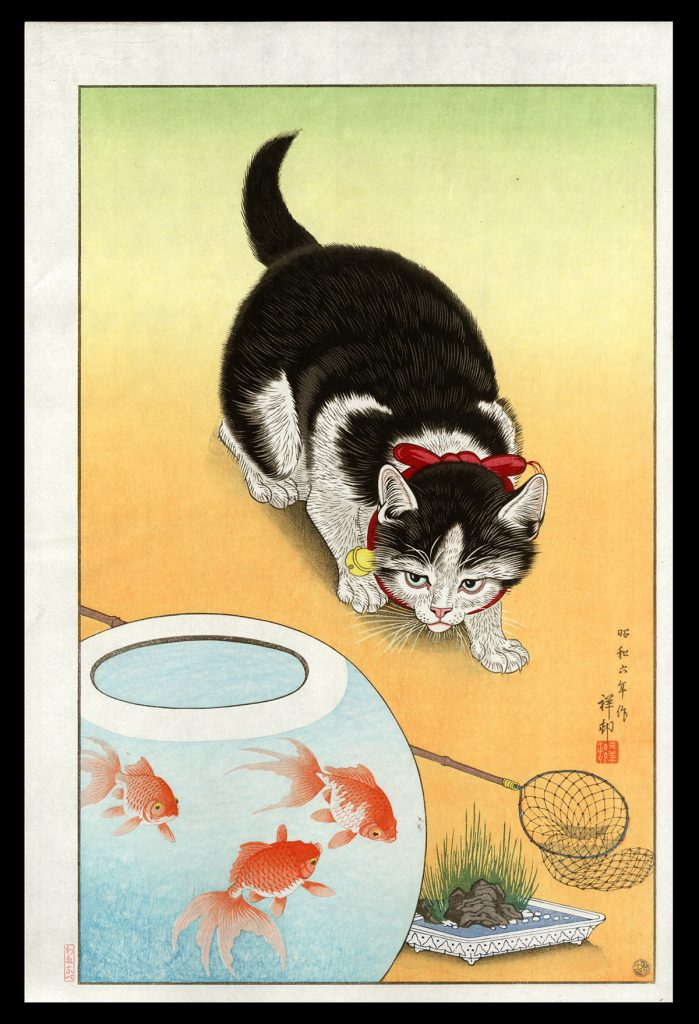 Goldfish Bowl and a Cat
