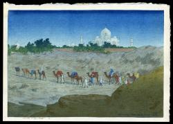 Taj-Mahal From the Desert