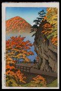 Autumn at Saruiwa