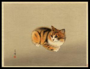 Kitten Seicho