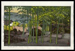 Bamboo Garden, Hakone Museum