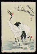 Cranes and Plum Blossoms