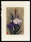 Irises, No 93