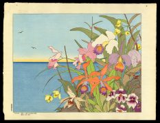 Fleurs Des Iles Lointaines. Mers De Sud